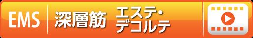 モバイルバイオデコルテ編