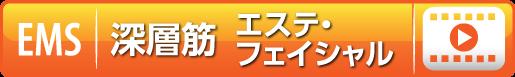 モバイルバイオフェイシャル編